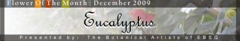 Banner for Flower of the Month: Eucalyptus art show