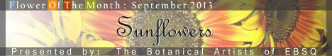 Banner for Flower of the Month: Sunflowers art show