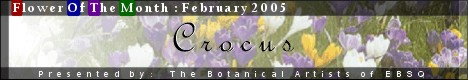 Banner for Flower of the Month: Crocus art show