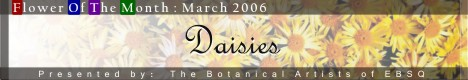 Banner for Flower of the Month: Daisies art show