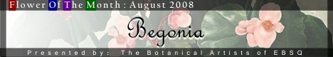 Banner for Flower of the Month: Begonia art show