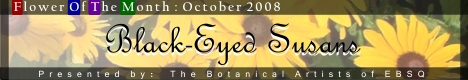 Banner for Flower of the Month: Black-Eyed Susan art show