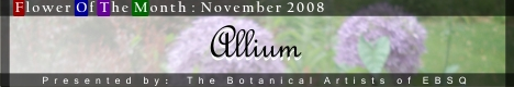 Banner for Flower of the Month: Allium art show