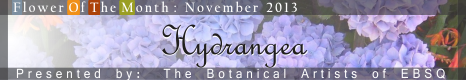 Banner for Flower of the Month: Hydrangea art show