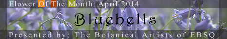 Banner for Flower of the Month: Bluebells art show