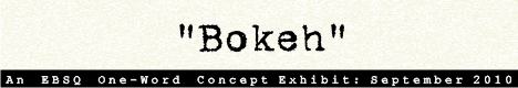 Banner for One-Word Concept: Bokeh art show