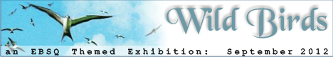 Banner for Wild Birds art show