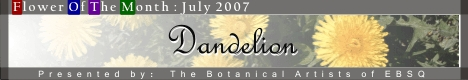 Banner for Flower of the Month: Dandelions art show