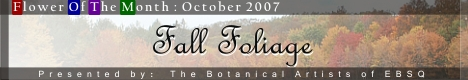 Banner for Flower of the Month: Fall Foliage art show