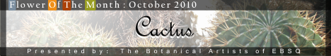 Banner for Flower of the Month: Cactus art show