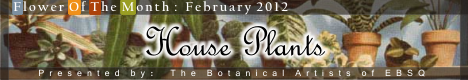 Banner for Flower of the Month: House Plants art show