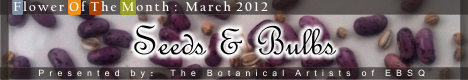 Banner for Flower of the Month: Seeds & Bulbs art show
