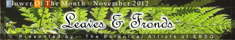Banner for Leaves & Fronds art show