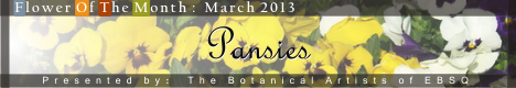 Banner for Flower of the Month: Pansies art show
