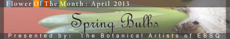 Banner for Flower of the Month: Spring Bulbs art show