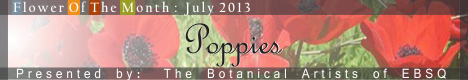 Banner for Flower of the Month: Poppies art show