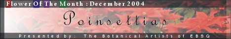 Banner for Flower of the Month: Poinsettia art show