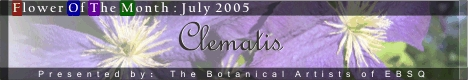 Banner for Flower of the Month: Clematis art show