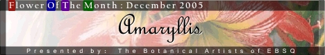 Banner for Flower of the Month: Amaryllis art show