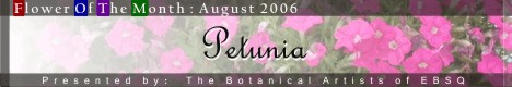 Banner for Flower of the Month: Petunia art show