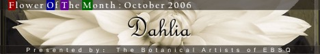 Banner for Flower of the Month: Dahlia art show