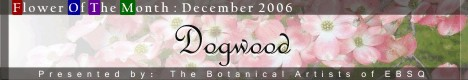 Banner for Flower of the Month: Dogwood art show