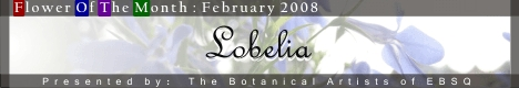 Banner for Flower of the Month: Lobelia art show