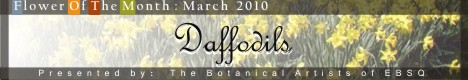 Banner for Flower of the Month: Daffodils '10 art show