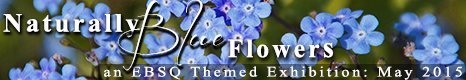 Banner for Blue Flowers art show
